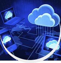 Immense Data Cloud Services